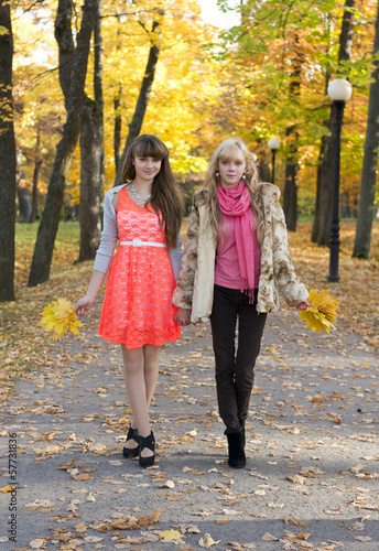 Two beautiful girls  walking in autumn park