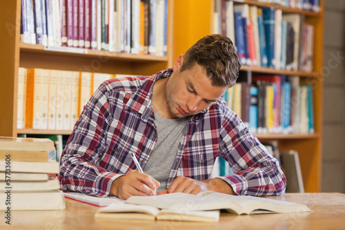 Handsome concentrated student studying his books
