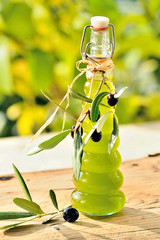Olive oil in bottle with branch of olive, garden background