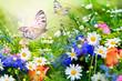 Gartenparadies - 57751205