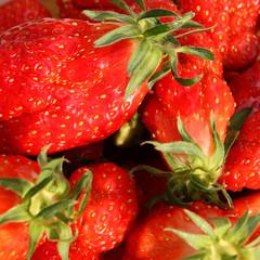 belles fraises en gros plan
