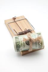 ratonera con billetes