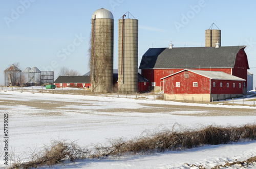 Barns with Multiple Silos