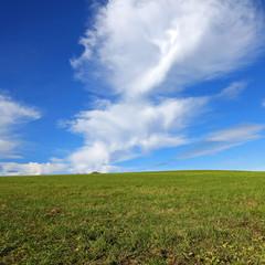 grüne Wiese mit blauem Wolkenhintergrund