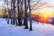 Winter park at sunset