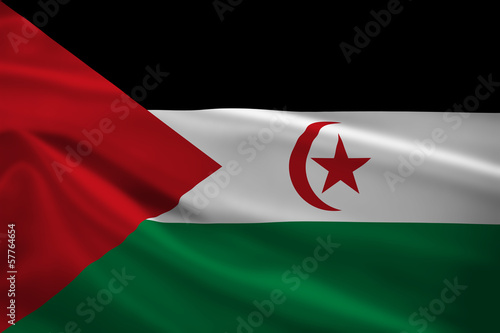 Sahrawi Arab Democratic Republic flag blowing in the wind