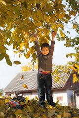Boy in the autumn garden