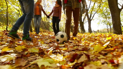 Football On Leaves