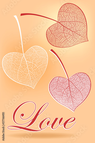 Leaves in the form of heart, a love symbol