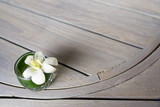 white flower decorate on the brown wooden table