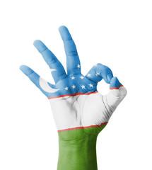 Hand making Ok sign, Turkmenistan flag painted