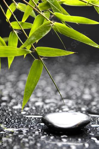 zen-kamienie-i-bambusa-w-kropli-wody