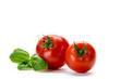 zwei tomaten mit Basilikum