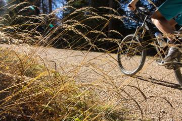 Mountainbike Bad Reichenhall