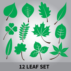 leaves icon set eps10