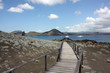 Galapagos, Bartolome Island, view of the pinnacle