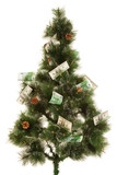 Picture of fir-tree with a lot of money