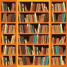 Duży regał z różnych książek