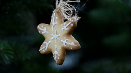 Gingerbread Christmas star