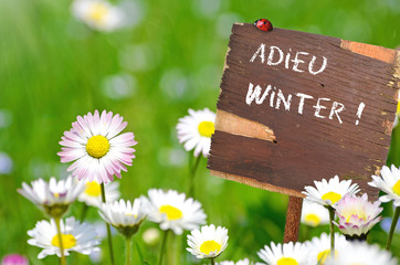 Adieu Winter