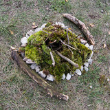 Extinct campfire lined with green moss poster