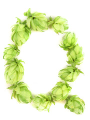 Hop flowers laid in form of letter Q.