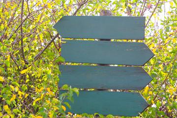 Wegweiser im Herbstwald