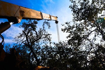 Mobile crane with risen boom into a blue sky