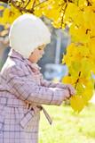 toddler girl near fall tree