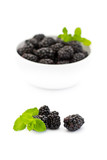 Blackberries with mint in front of white bowl with blackberries