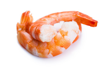 tiger shrimps