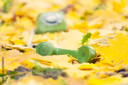 green vintage phone in yellow leaves