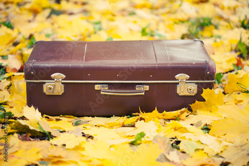 vintage suitcase in autumn park