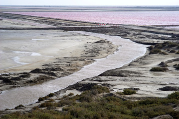 Salt flats in Camargue, France