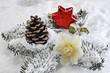 Weihnachtsdekoration roter Stern und Christrose