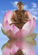 bouddha et fleur de lotus
