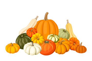 Pumpkins. Vector illustration.