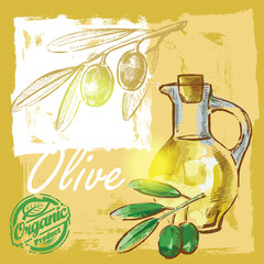 vector olive