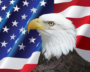 Bald Eagle portrait with USA flag Background