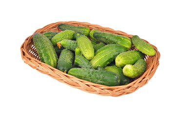 Cucumber gherkin in a wattled basket, isolated on white