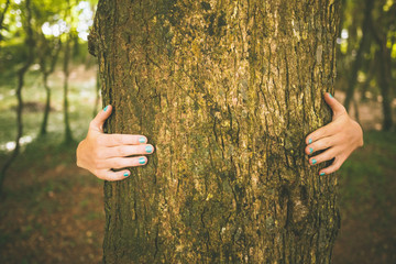 Picture of woman embracing a trunk