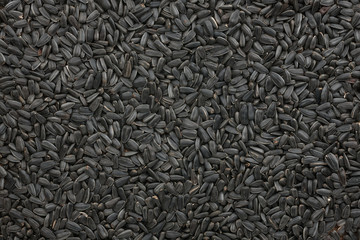 Background out of sunflower seeds