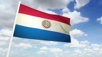 flag paraguay 02