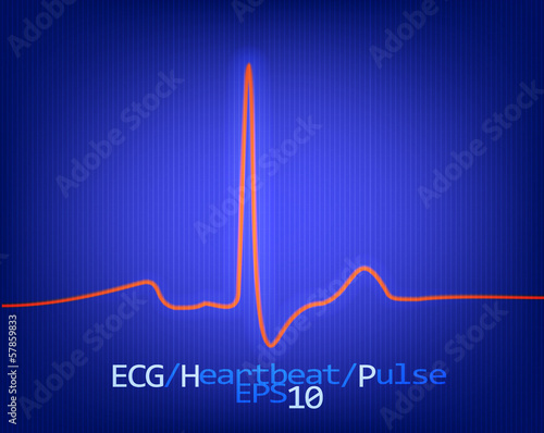 Normal complex of the ECG. Vector.