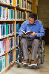Concentrating man in wheelchair reading a book