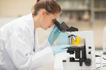 Concentrating brunette student looking through microscope