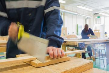 Craftsman sawing wood