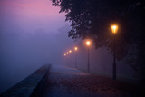 Fototapety Empty footpath in morning mist with colored sky visible