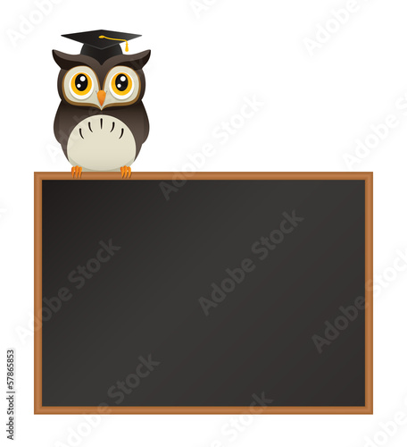 Owl on Blackboard