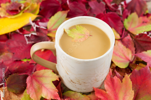 Seasonal Fall Coffee